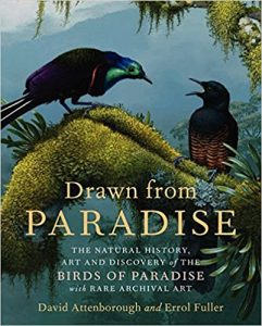 Drawn from Paradise: The Natural History, Art and Discovery of the Birds of Paradise with Rare Archival Art cover