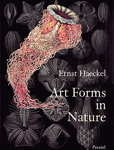 Art Forms in Nature: The Prints of Ernst Haeckel cover