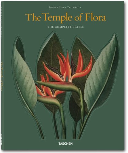 The Temple of   Flora cover