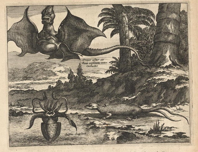 Arnoldus Montanus' New and Unknown World (1671)