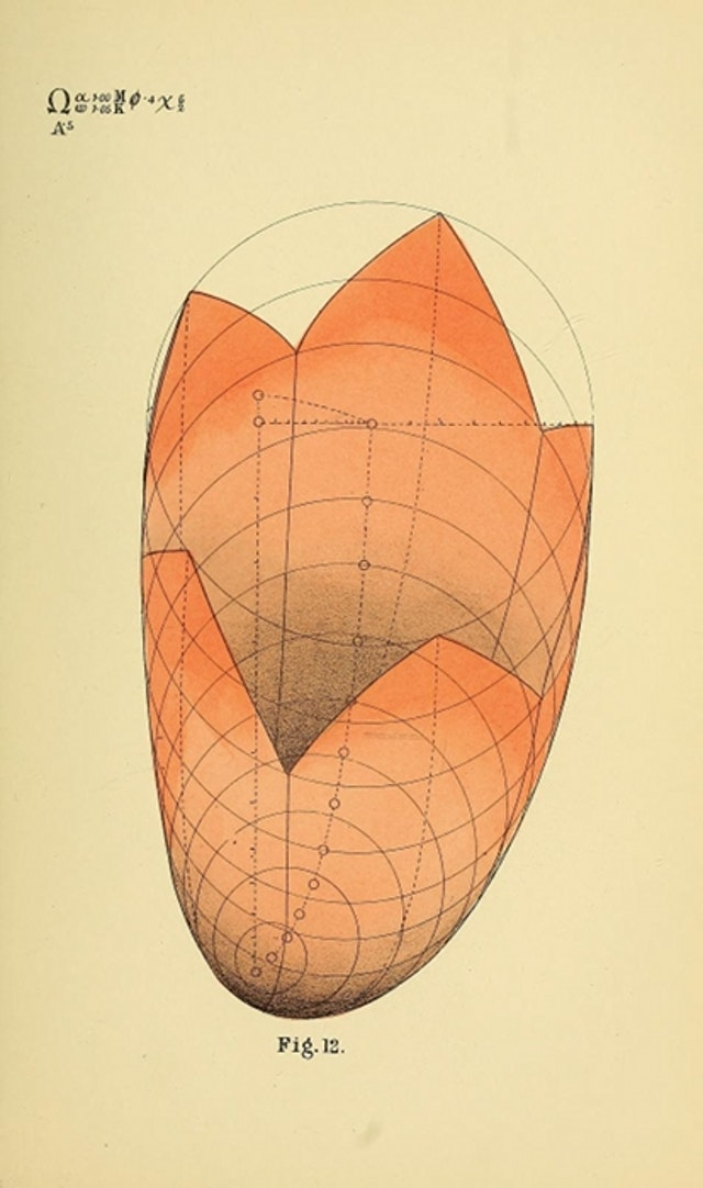 B. W. Betts' Geometrical Psychology