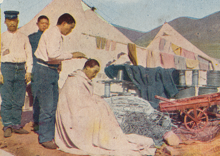 1910s Japanese Postcards : Biography of General Nogi