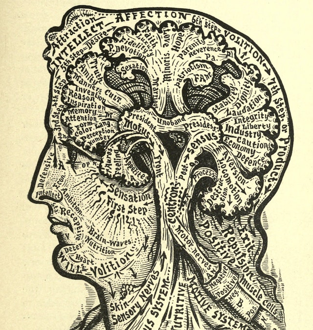 Diagrams from Dr Alesha Sivartha's Book of Life (1898)