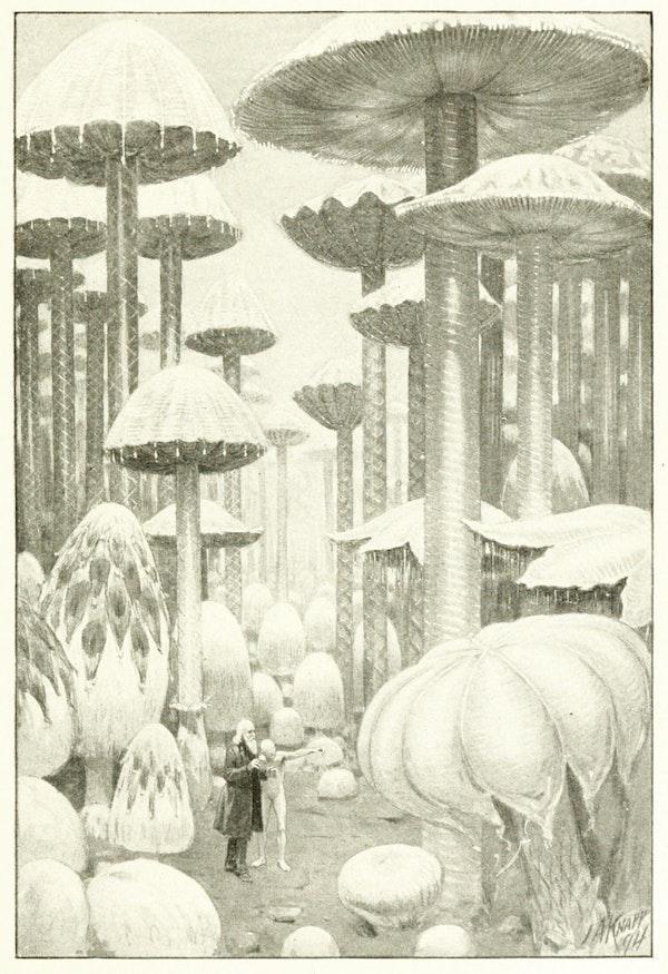 Illustration by john augustus knapp