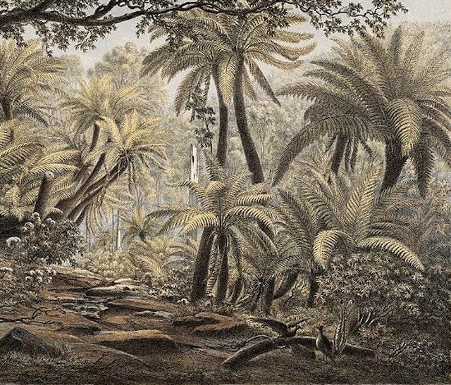 Eugène von Guérard's Australian Landscapes