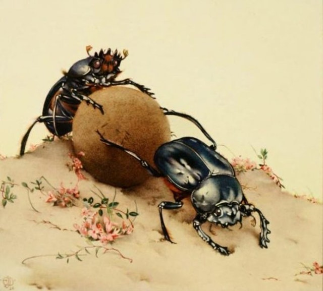 Fabre's Book of Insects (1921)