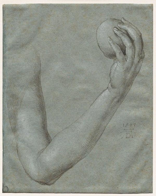 Arm of Eve Dürer
