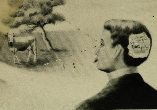 Is Man a Free Agent? The Law of Suggestion (1902)
