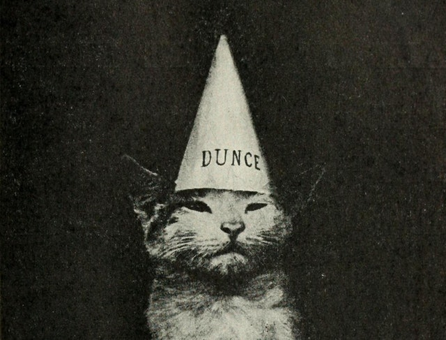 Kittens and Cats: A First Reader (1911) — Cats and Captions before the Internet Age