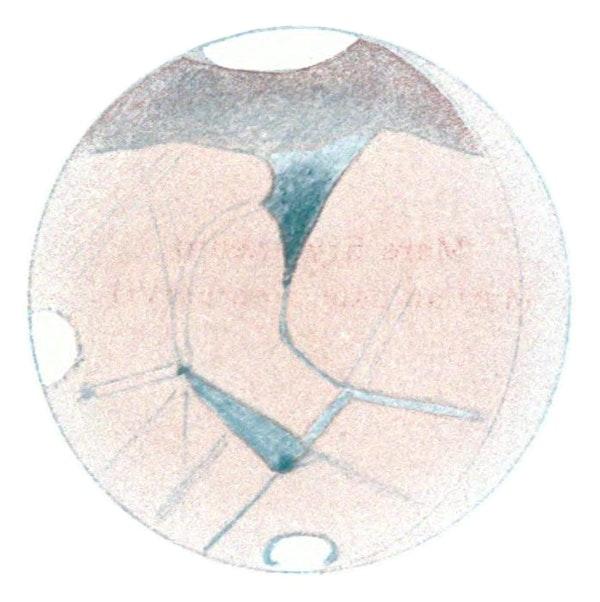 Mars canal illustration