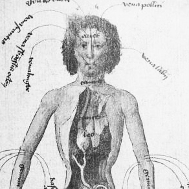 Medical Imagery of the 15th Century