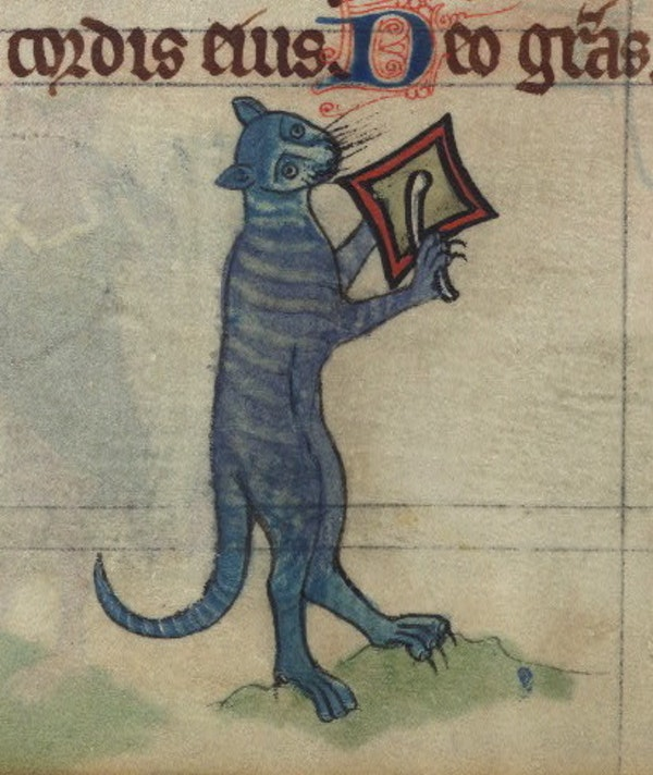 Cat beating a cymbal, detail from fol. 78v.