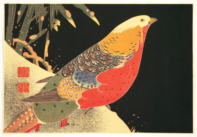 Polychrome Woodblocks of Itō Jakuchū Birds