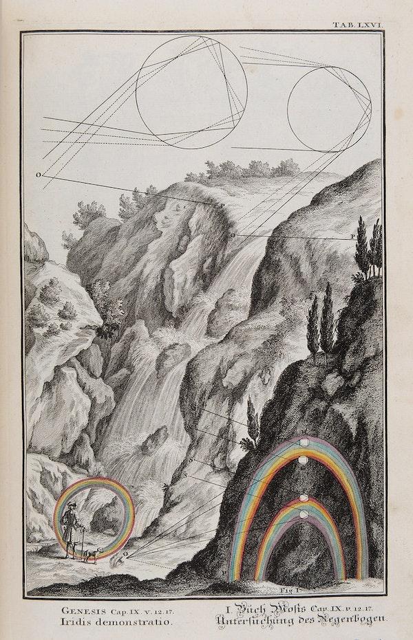 Plate LXVI from Scheuchzer's Physica Sacra (1731).