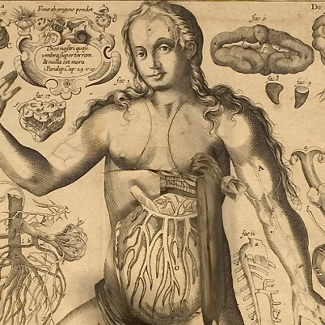 Remmelin's Anatomical 'Flap' Book (1667)