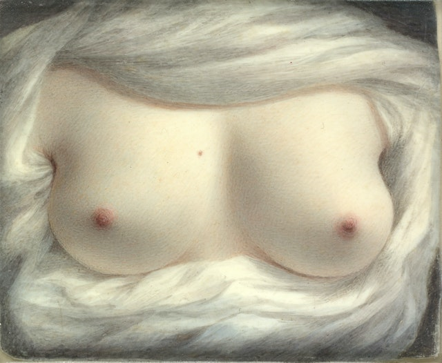 Sarah Goodridge's Beauty Revealed (1828)