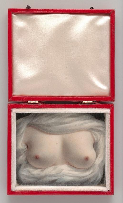 Sarah Goodridge's painting of her breasts
