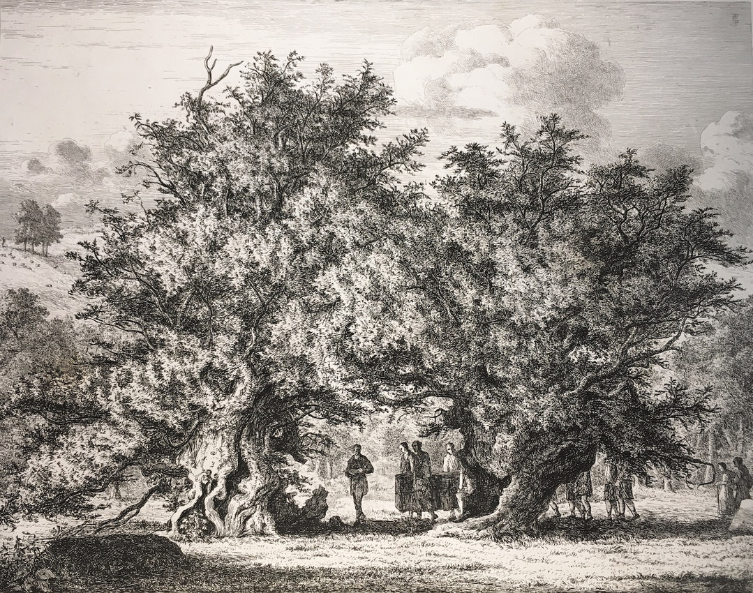 Engraving of the Great Yew