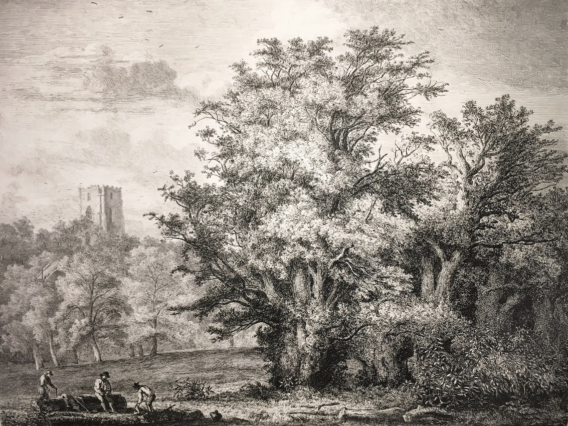 Engraving of the Yew Trees