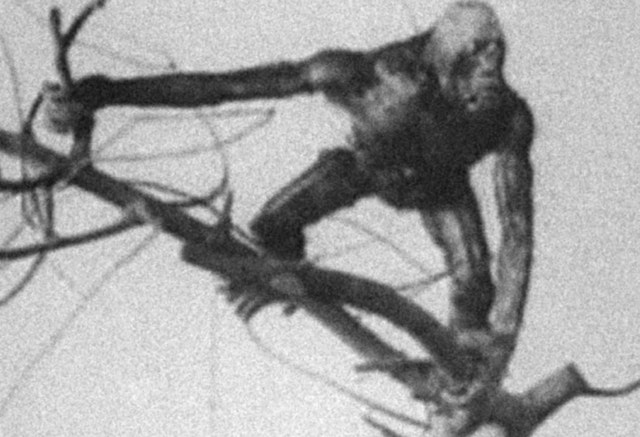 The Dinosaur and the Missing Link: A Prehistoric Tragedy (1917)