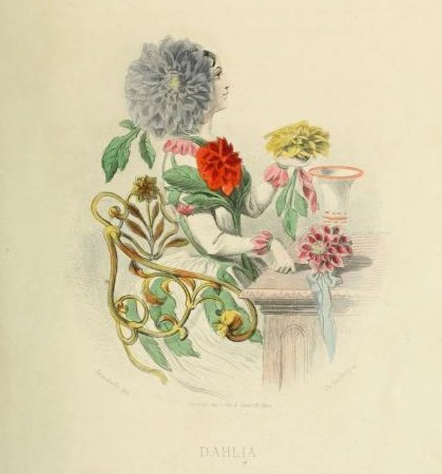 The Flowers Personified (1847)