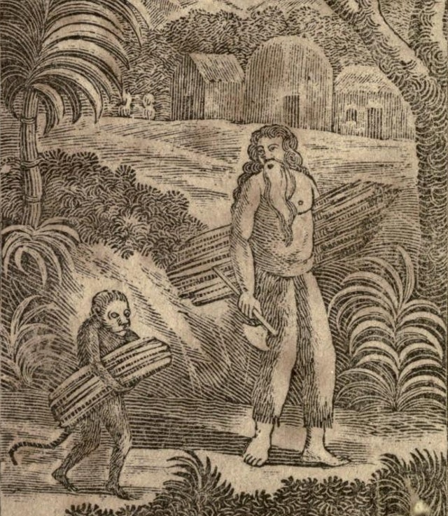 The Hermit; or, The Unparalleled Sufferings, and Surprising Adventures, of Philip Quarll (1814)