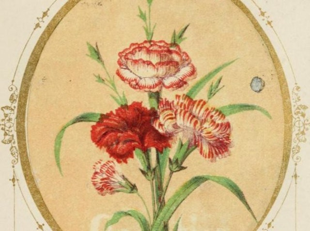 The Language of Flowers: An Alphabet of Floral Emblems (1857)
