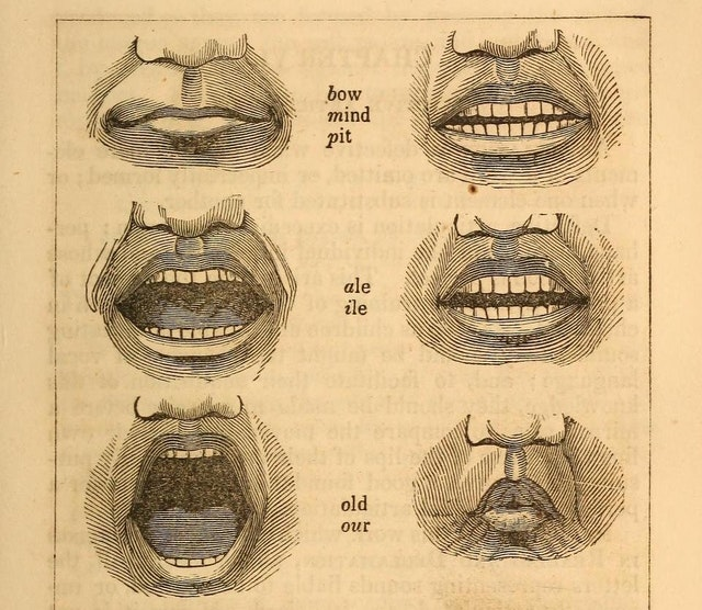 The Postures of the Mouth (1846)