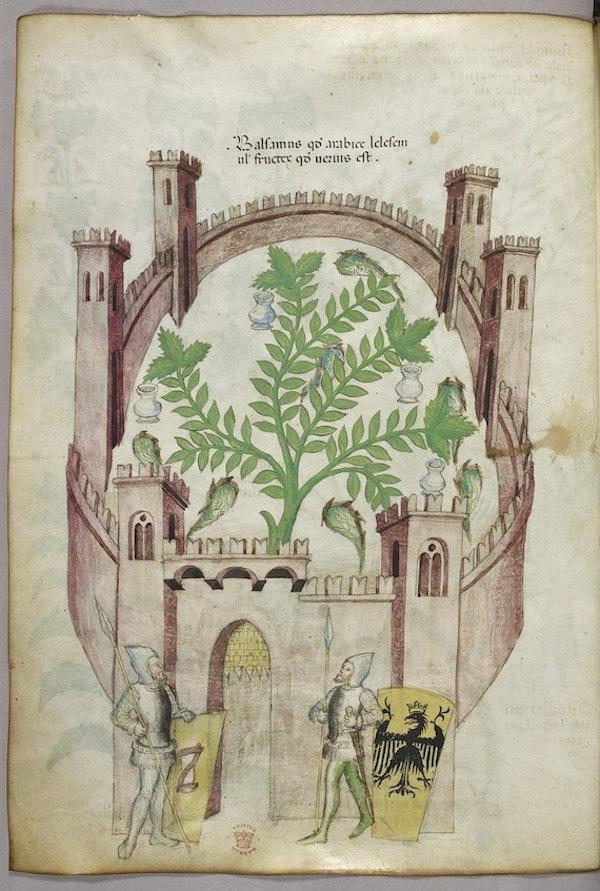 sloane herbal walled garden