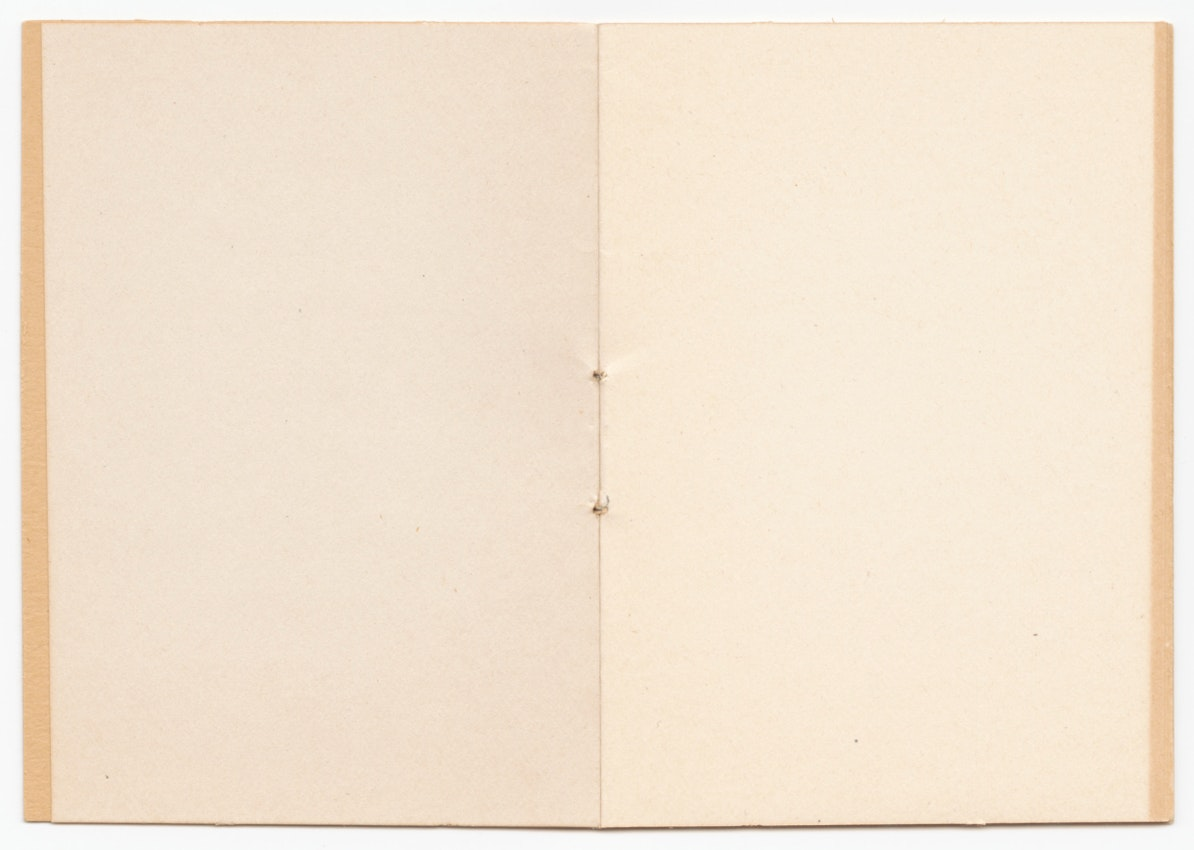 Empty joke book titled This Little Book Contains Every Reason Why Women Should Not Vote) caption={All the books pages are blank.