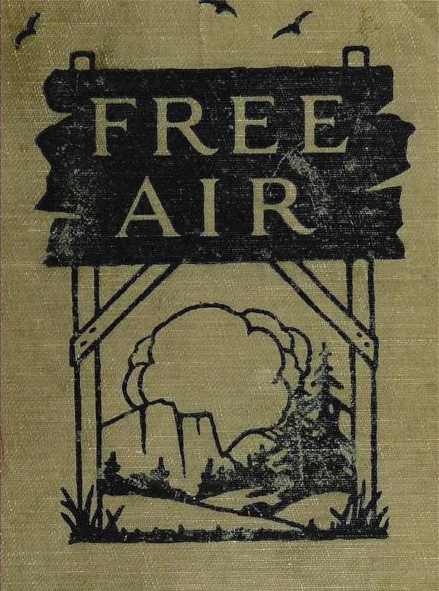free air sinclair lewis
