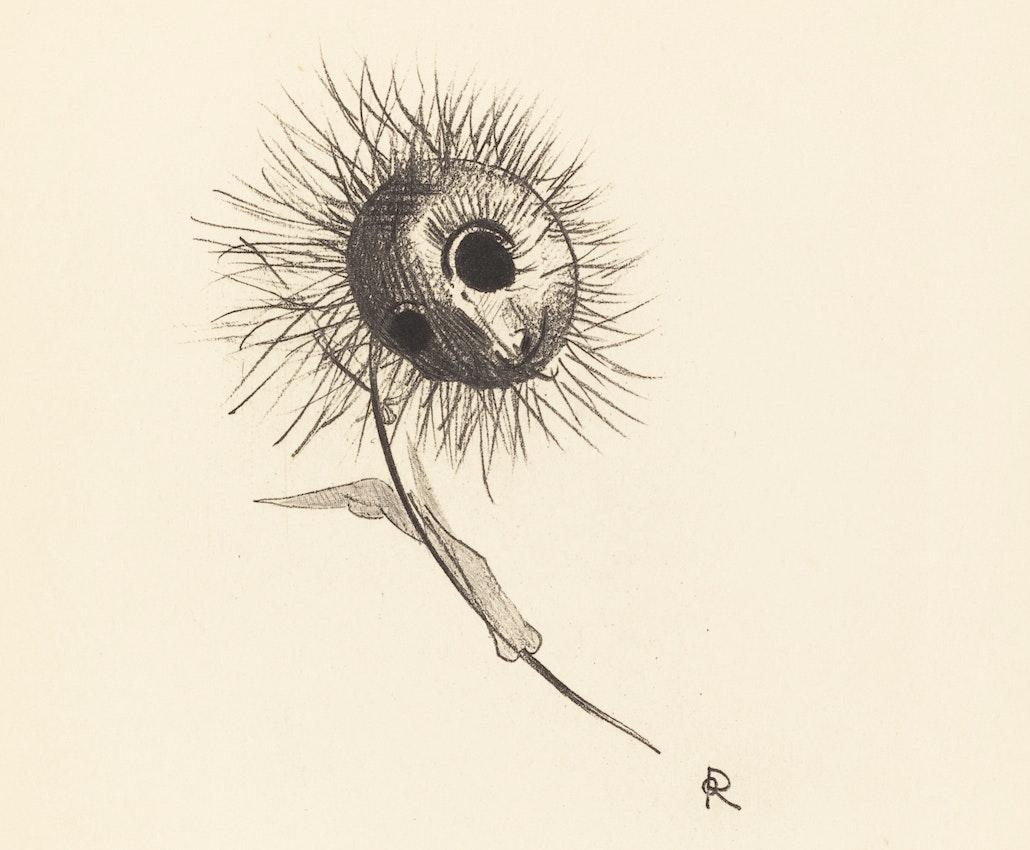 odilon redon fleur de mal