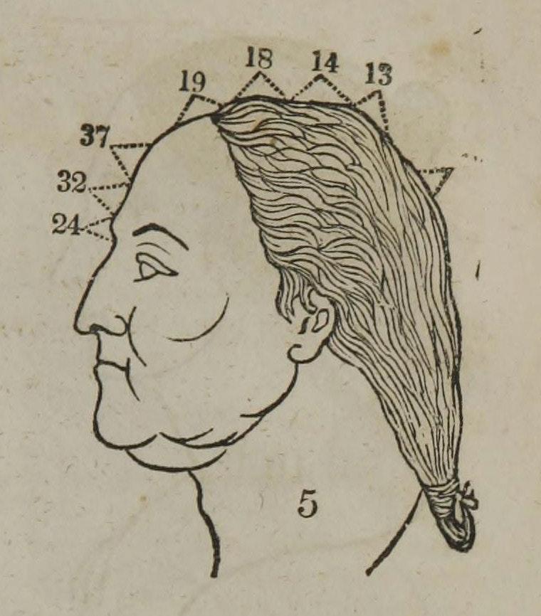 george washington phrenology
