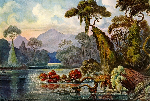 Human Forms in Nature: Ernst Haeckel's Trip to South Asia and Its Aftermath