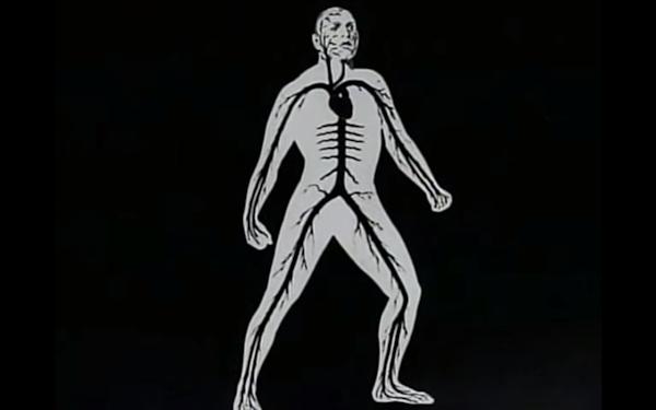 Jacob Sarnoff and the Strange World of Anatomical Filmmaking