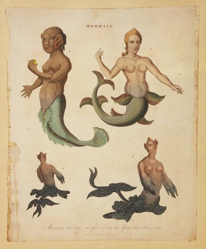 engraving by John Paas of mermaids