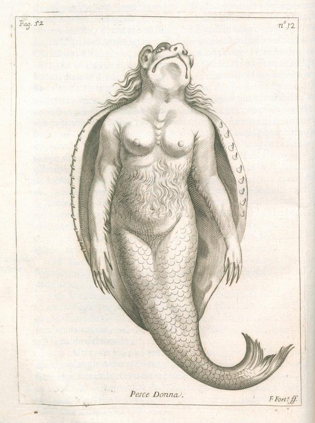 17th-century mermaid illustration