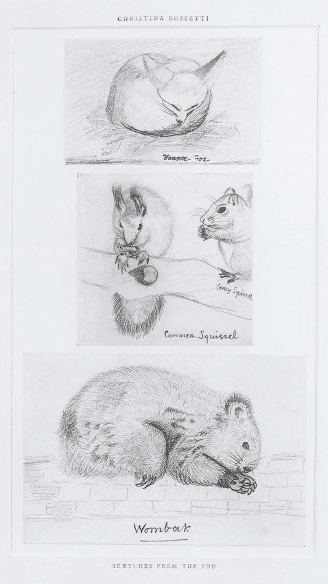 christina rossetti wombat