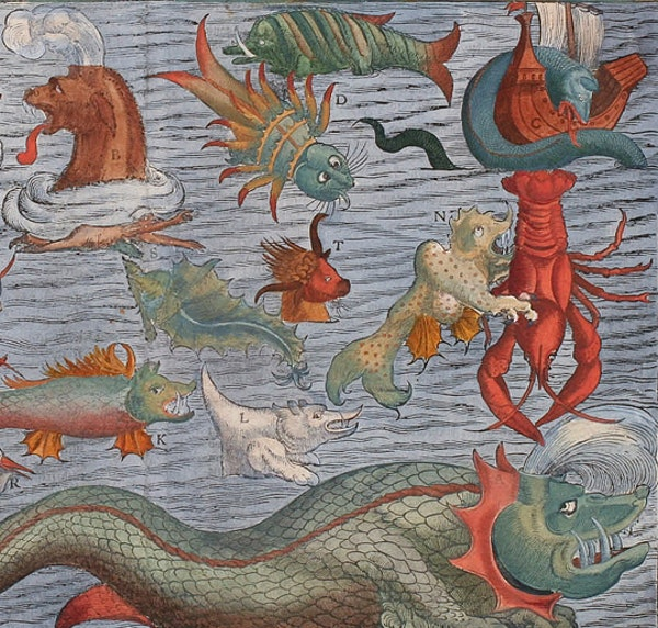 Olaus Magnus' Sea Serpent