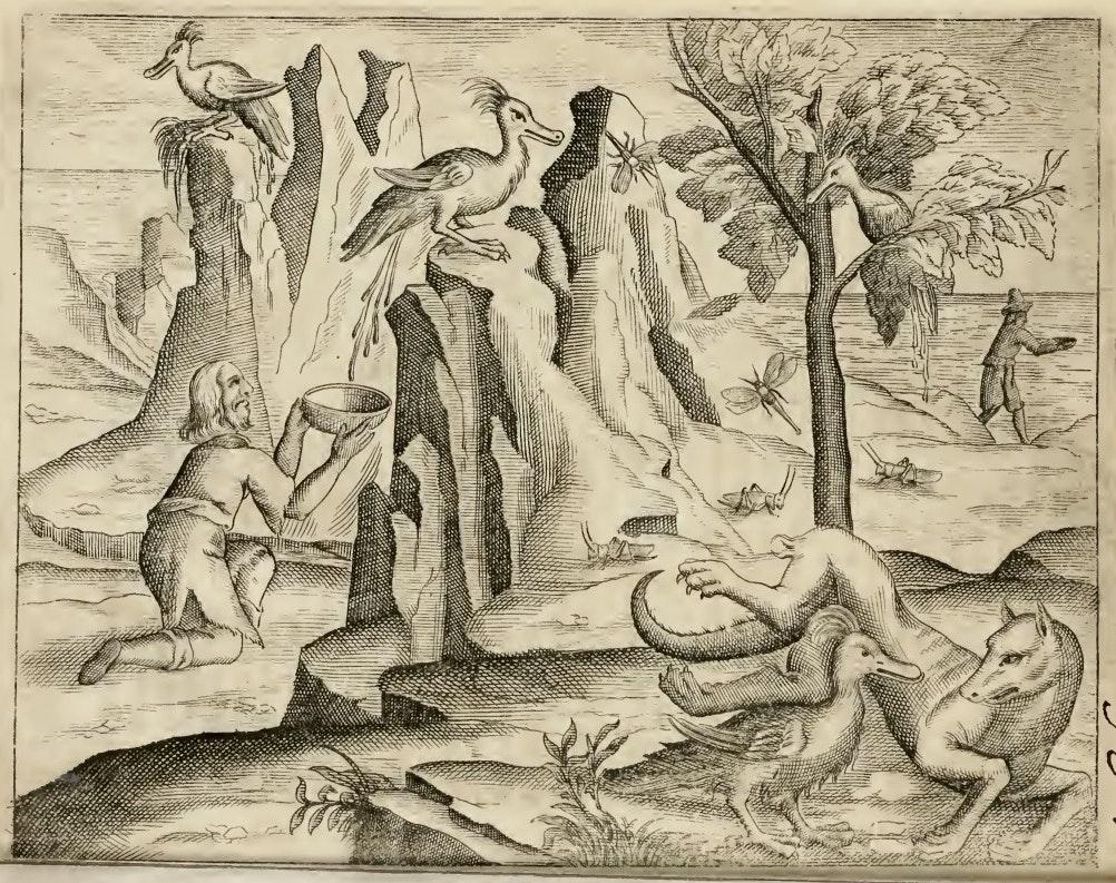 illustration from Justus Fidus Klobius's Ambræ historiam