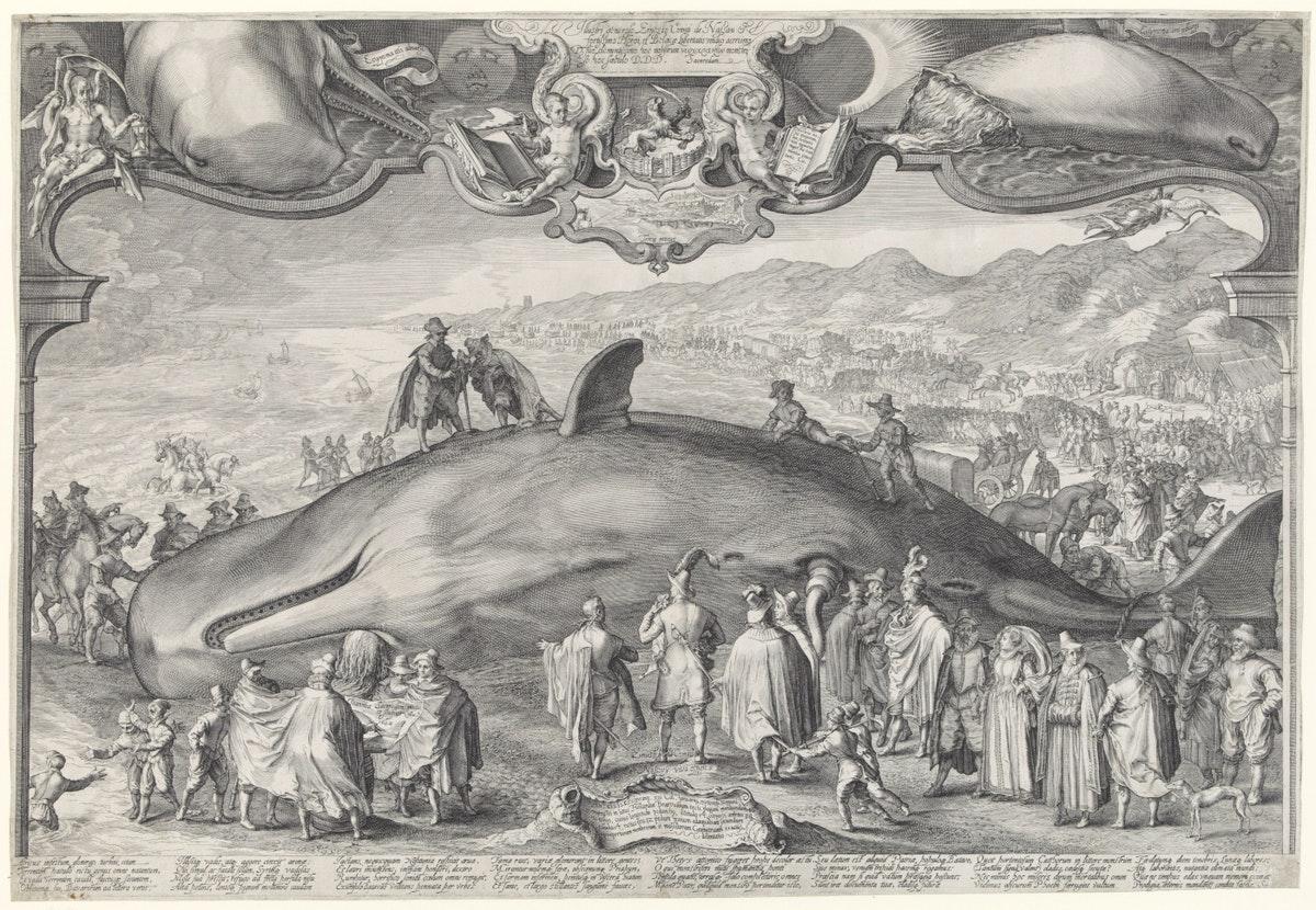 Jan Saenredam print of a beached whale