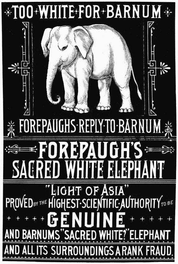 forepaugh barnum elephant