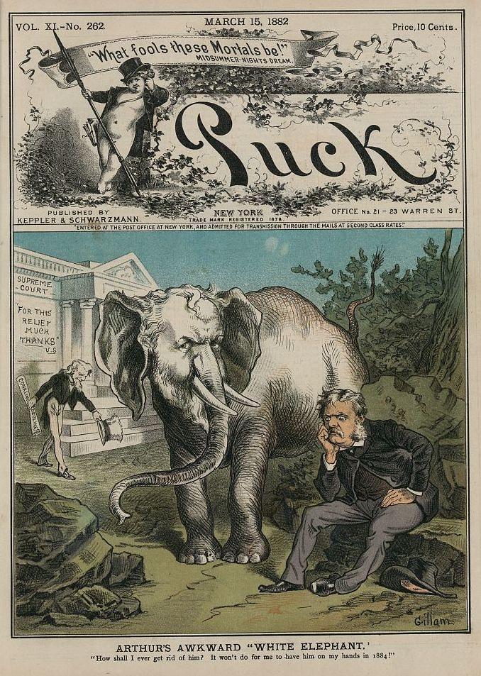 white elephant politics