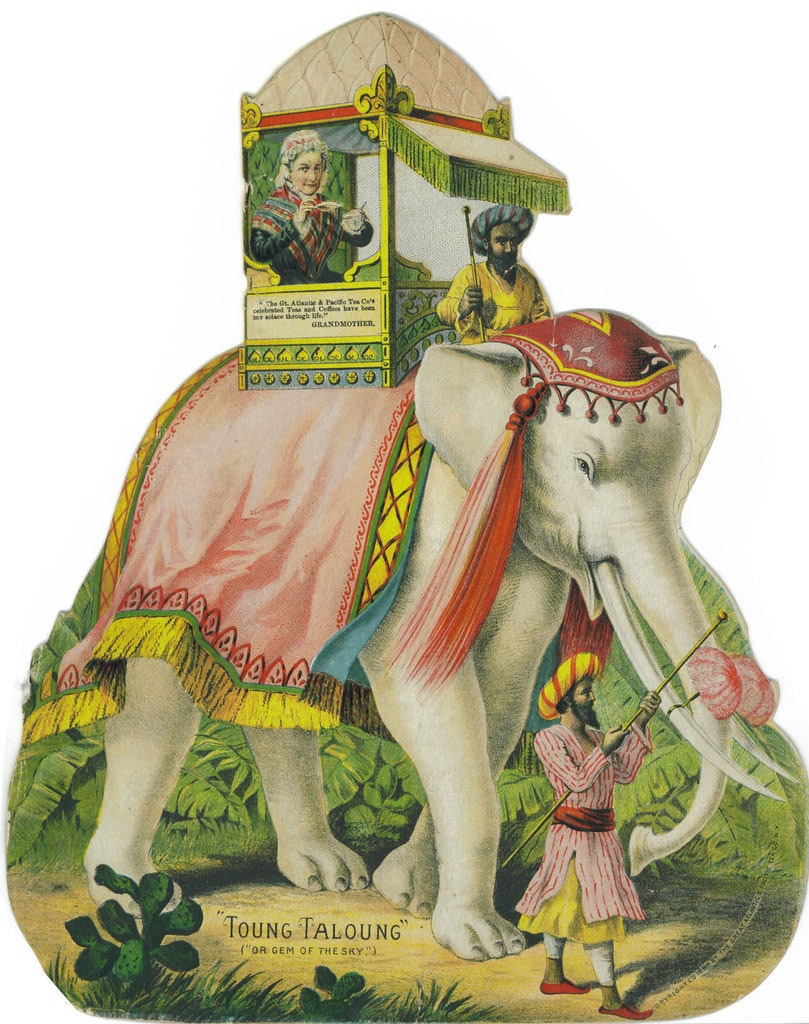 tea card white elephant