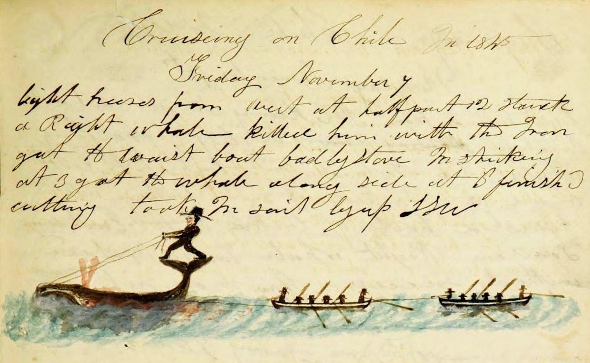 Whaling logbook illustration