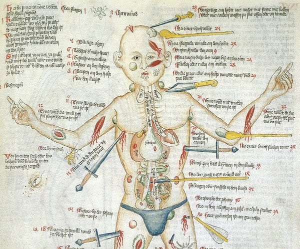 The Many Lives of the Medieval Wound Man