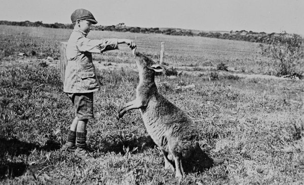 The Quirky, the Artful, and the Unexpected: Historic Photographs of Life in Australia