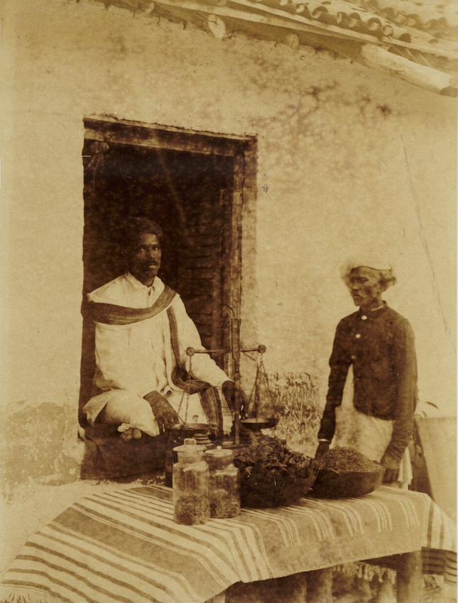 ganja sellers