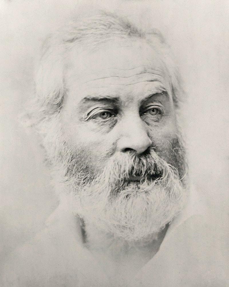 Walt Whitman by Alexander Gardner