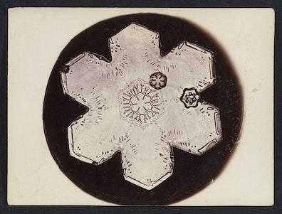 Snow Crystal V